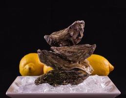 quattro gusci di ostriche su ghiaccio con limone come pila di equilibrio foto