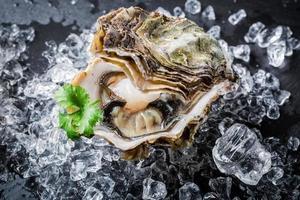 deliziose ostriche su ghiaccio tritato