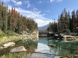 paesaggio nel parco nazionale di Jasper