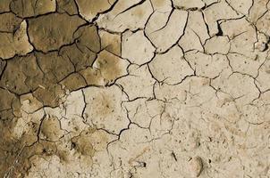 terreno arido marrone foto
