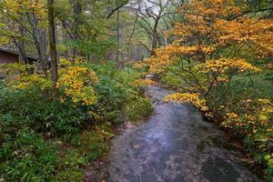 autunno a kamikochi in giappone con laghetto ruscello