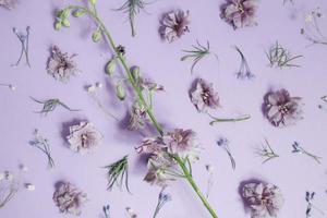 decorazioni floreali con petali viola