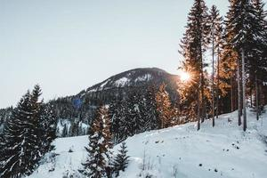 picco di montagna innevata
