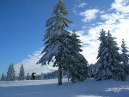 paesaggio montano in inverno