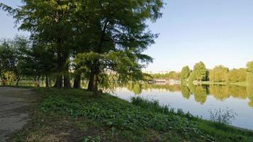 lago in un parco durante il giorno