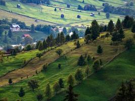 collina verde con alberi di fronte a un paese