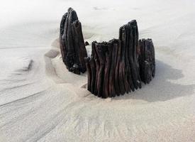 spiaggia di legno nella sabbia foto