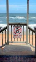 ingresso spiaggia all'oceano foto