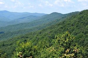 foresta sui monti appalachi