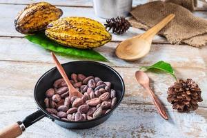 fave di cacao crudo e baccelli di cacao