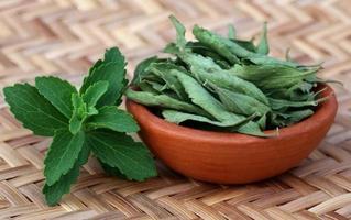 foglie di stevia verdi e sporche