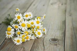 bouquet estivo di camomilla sul vecchio fondo di legno grigio foto