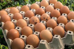 uova faccia felice concetto nel pacchetto