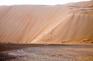 incredibili dune di sabbia nell'oasi di liwa, emirati arabi uniti foto