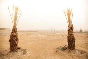 terra del deserto