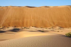 lo tsunami di sabbia del deserto arabo foto