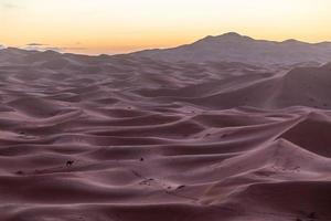 mare di sabbia foto