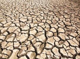 la siccità rompe le fessure del terreno