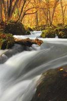 colori autunnali del fiume oirase