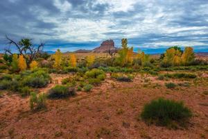 colori autunnali butte cavallo selvaggio e bellissimo cielo drammatico Utah