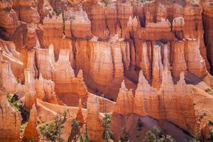 parco nazionale di bryce canyon nello utah, usa foto