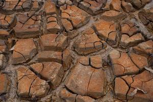 terra di siccità