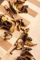funghi di bosco essiccati