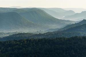 valle della foresta di montagna nebbiosa foto