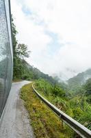 viaggiare nella foresta