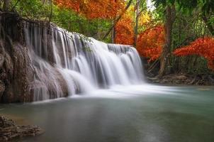 bellissima cascata nella foresta