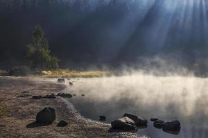 lago fumoso nella foresta