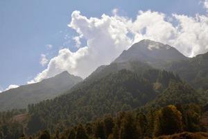 belle montagne del Caucaso con ricche foreste foto