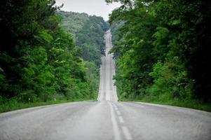 strada vuota attraverso la foresta foto