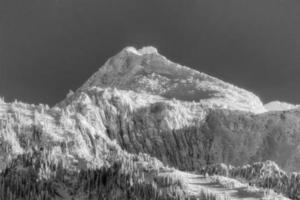 picco solitario coperto di neve bw foto