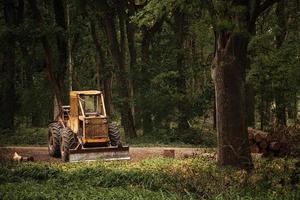 vecchio trattore sul lavoro di deforestazione forestale foto