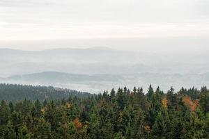 giornate nuvolose nella foresta bavarese