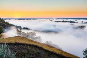 alba nebbiosa sulla valle e sulla foresta