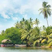 foresta equatoriale e barche sul lago