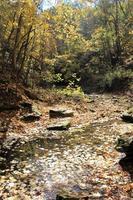 torrente d'autunno