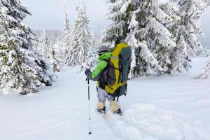 donna zaino in spalla sta camminando nella foresta in inverno foto