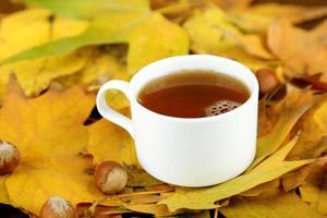 tazza di bevanda calda, su sfondo di foglie gialle