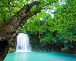 cascata profonda della foresta al parco nazionale della cascata di erawan foto