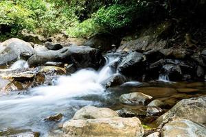 cascata con sfondo foresta verde intenso.