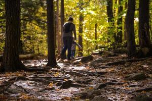 escursioni nei boschi foto