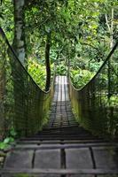 ponte pedonale in legno