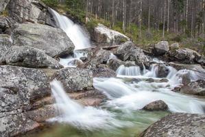 cascate al flusso studeny potok negli alti tatra, slovacchia foto
