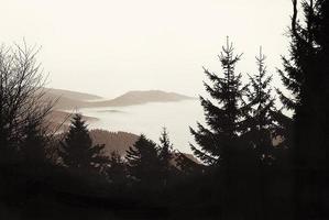 vosges dans la brume foto