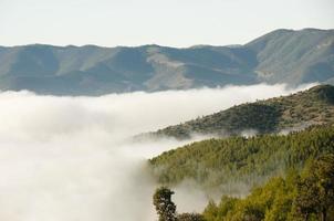 Montagne dell'Atlante Nebbia - Marocco foto