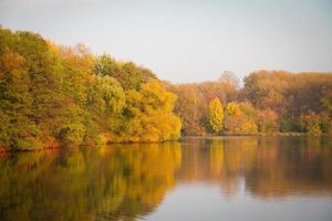 autunno nel parco. foto