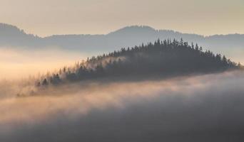 bellissima alba con la nebbia mattutina